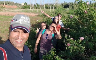 Destinos por descubrir: EL VALLE DE LAS ROSAS MARRUECOS